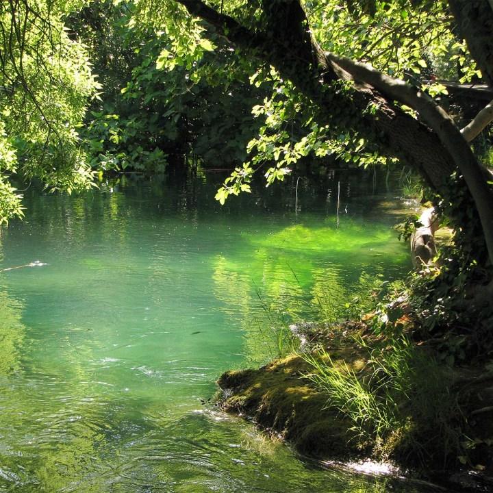 La Dalmatie partie 3 : Krka, un paradis entre eaux etforêts