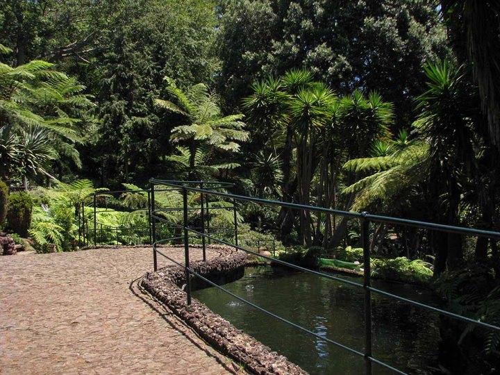 291117_Funchal_cote_jardin_14