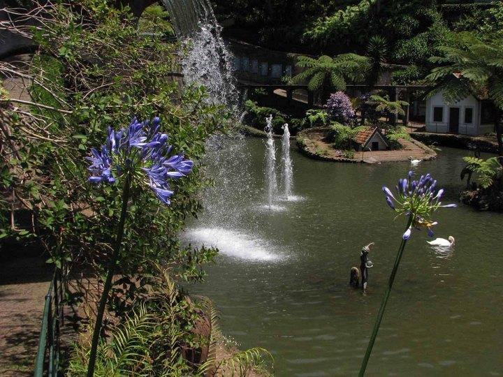 291117_Funchal_cote_jardin_20