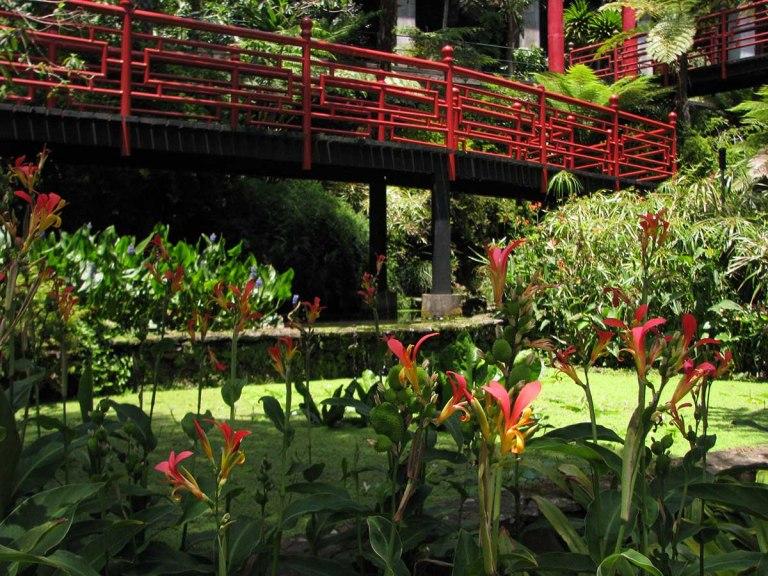 291117_Funchal_cote_jardin_26