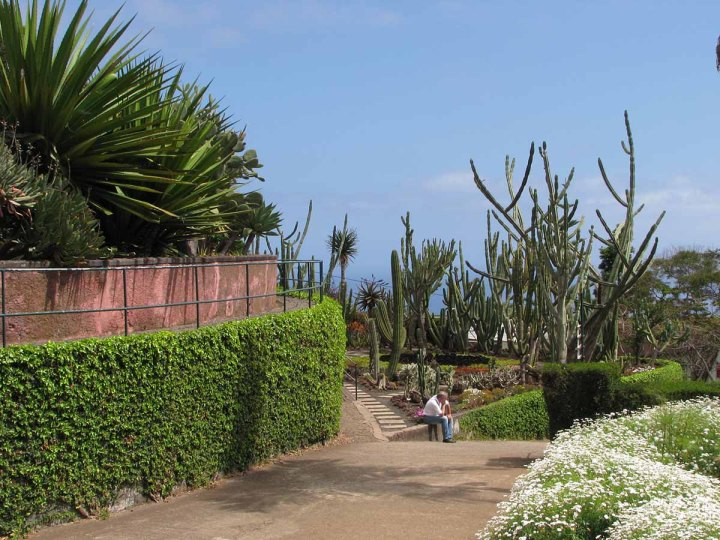 291117_Funchal_cote_jardin_35
