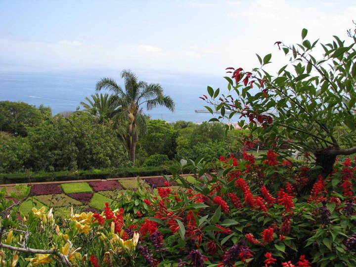 291117_Funchal_cote_jardin_39