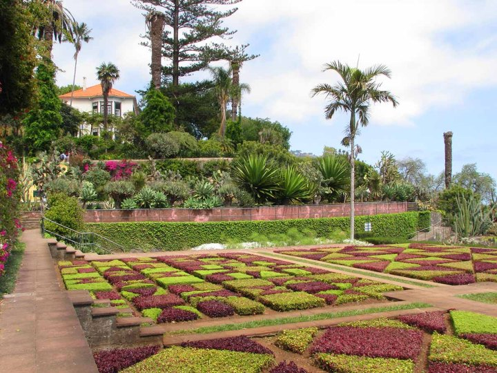 291117_Funchal_cote_jardin_4