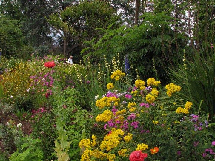 291117_Funchal_cote_jardin_40