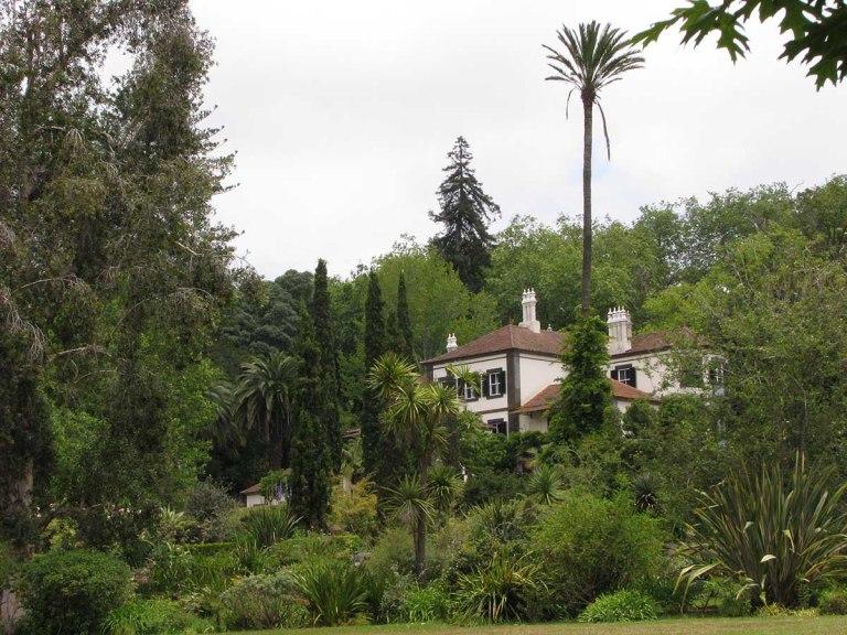 291117_Funchal_cote_jardin_42