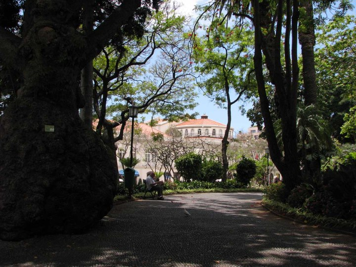 291117_Funchal_cote_jardin_8