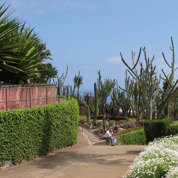 Funchal, côté jardins : comme une impressiond'Eden