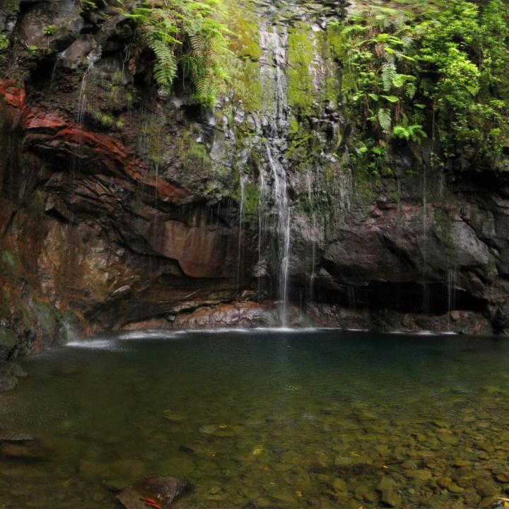 Randonnée à Madère : les 25 Fontes, de levada encascade