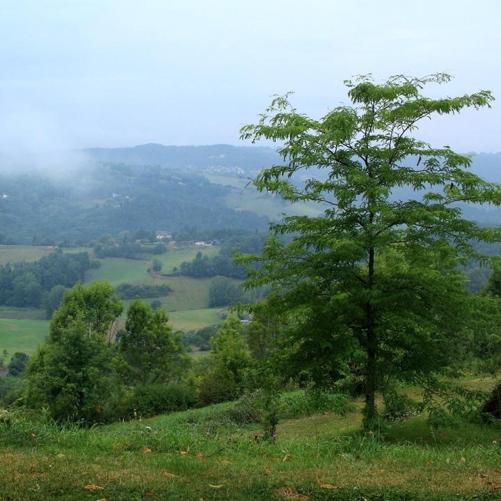 12 coups de cœur autour de Brive-la-Gaillarde