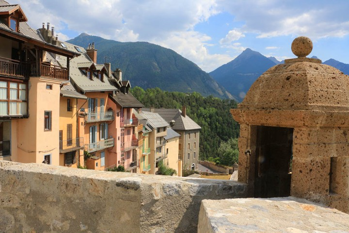 Belle des Alpes
